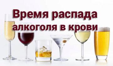 Время распада алкоголя в крови